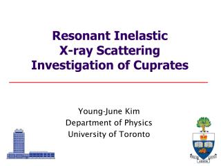 Resonant Inelastic  X-ray Scattering  Investigation of Cuprates
