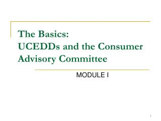 The Basics:  UCEDDs and the Consumer Advisory Committee