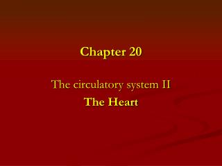 The circulatory system II The Heart