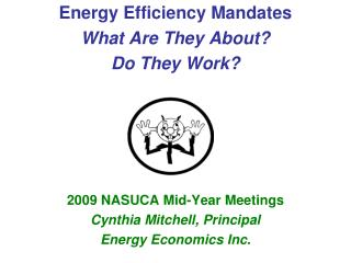 Energy Efficiency Mandates  What Are They About? Do They Work? 2009 NASUCA Mid-Year Meetings