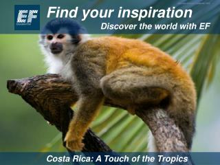 Find your inspiration Discover the world with EF
