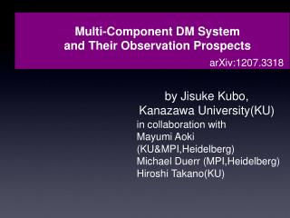 Multi-Component DM System and Their Observation Prospects