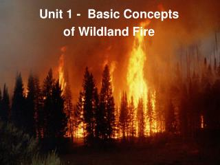 Unit 1 -  Basic Concepts  of Wildland Fire