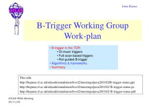 B-Trigger Working Group Work-plan
