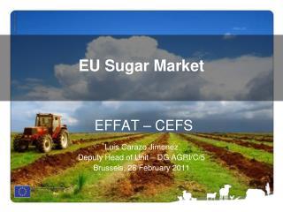 EFFAT – CEFS