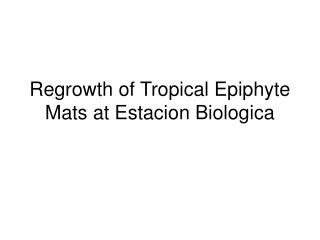Regrowth of Tropical Epiphyte Mats at Estacion Biologica