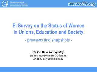EI Survey on the Status of Women  in Unions, Education and Society  - previews and snapshots -