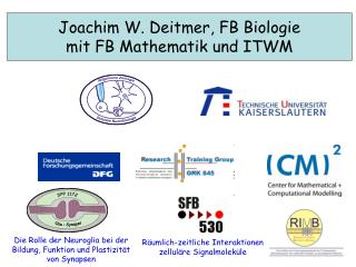 Joachim W. Deitmer, FB Biologie mit FB Mathematik und ITWM