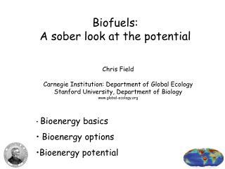 Biofuels: A sober look at the potential