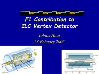 F1 Contribution to  ILC Vertex Detector