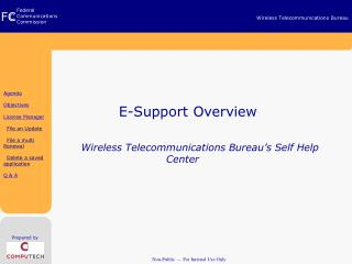 E-Support Overview               Wireless Telecommunications Bureau's Self Help Center