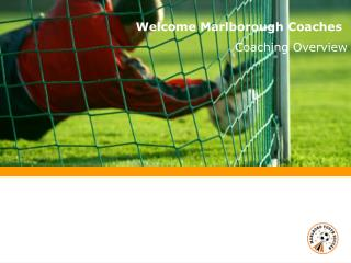 Welcome Marlborough Coaches