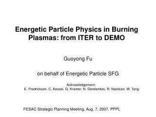 Energetic Particle Physics in Burning Plasmas: from ITER to DEMO