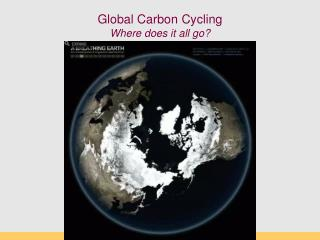 Global Carbon Cycling Where does it all go?