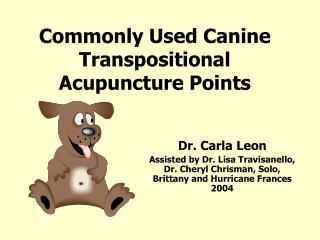 Commonly Used Canine Transpositional Acupuncture Points