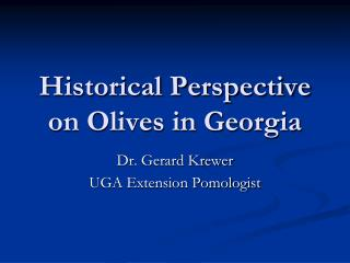 Historical Perspective on Olives in Georgia