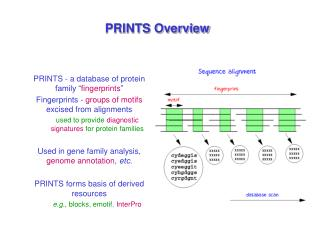 PRINTS Overview