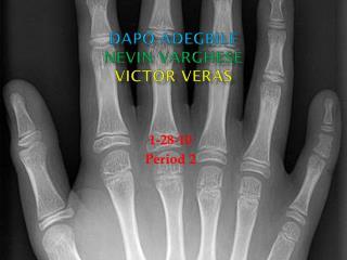 Dapo Adegbile Nevin  Varghese  Victor  Veras