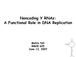 Noncoding Y RNAs:                                 A Functional Role in DNA Replication