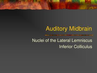 Auditory Midbrain