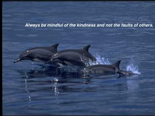 Always be mindful of the kindness and not the faults of others.
