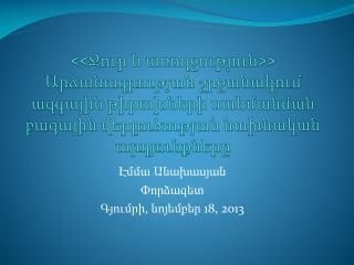 Էմմա Անախասյան Փ որձագետ Գյումրի ,  նոյեմբեր  18,  2013
