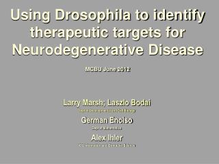 Using Drosophila to identify therapeutic targets for Neurodegenerative Disease  MCBU June 2012
