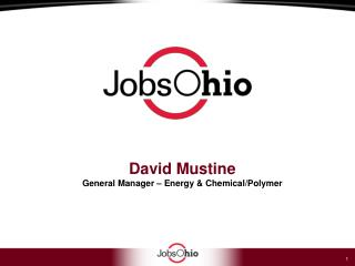 David Mustine General Manager – Energy & Chemical/Polymer