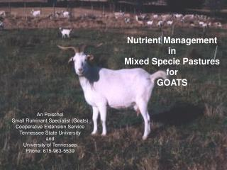 Nutrient Management in Mixed Specie Pastures for GOATS