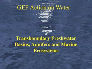 Transboundary Freshwater Basins, Aquifers and Marine Ecosystems
