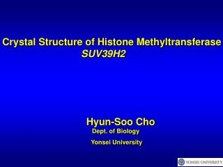 Crystal Structure of Histone Methyltransferase  SUV39H2