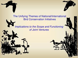 The Unifying Themes of National/International Bird Conservation Initiatives