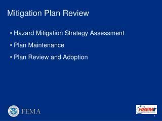 Mitigation Plan Review