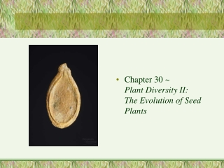 LECTURE 1 PLANT CLASSIFICATION