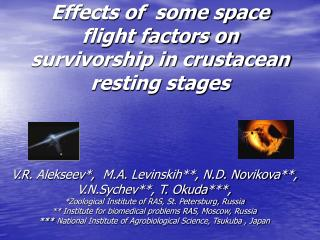 Effects of  some space flight factors on survivorship in crustacean resting stages