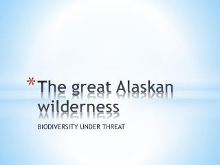The great Alaskan wilderness