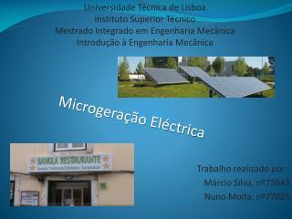 Universidade Técnica de Lisboa Instituto Superior Técnico