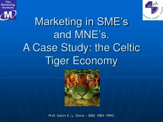Marketing in SME's  and MNE's.  A Case Study: the Celtic Tiger Economy