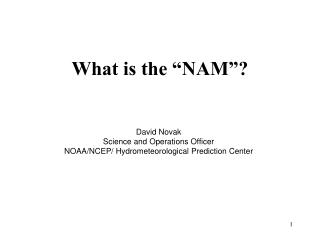 """What is the """"NAM""""?"""