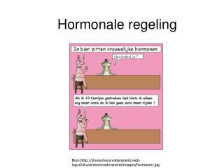 Hormonale regeling