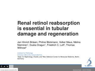 Renal retinol reabsorption is  essential in  tubular damage and regeneration