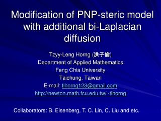 Modification of PNP-steric model with additional bi-Laplacian diffusion