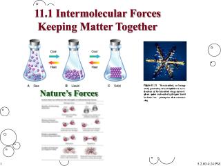 11.1 Intermolecular Forces Keeping Matter Together