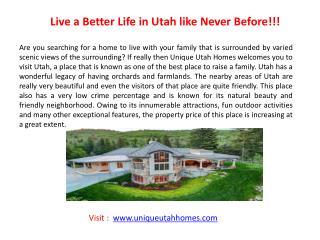 Provo Real Estate