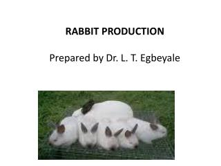 RABBIT PRODUCTION Prepared by Dr. L. T. Egbeyale