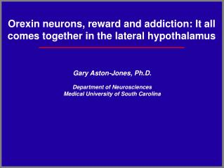 Orexin neurons, reward and addiction: It all comes together in the lateral hypothalamus