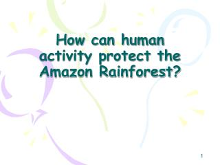 How can human activity protect the Amazon Rainforest