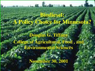 Biodiesel:  A Policy Choice for Minnesota?