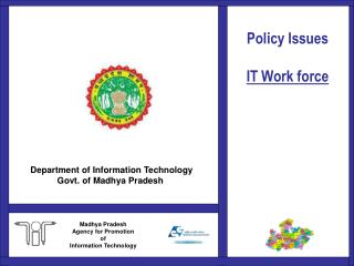 Policy Issues  IT Work force