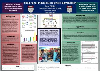 Sleep Apnea Induced Sleep Cycle Fragmentation David Whisler Knapp Center For Biomedical Discovery
